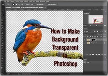 Make Image Background Transparent in Photoshop
