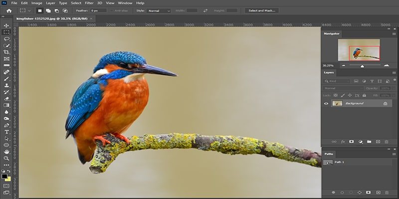 Raw Image to Make Background Transparent